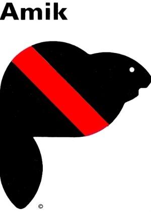 Amik, um castor, foi o mascote dos Jogos de 1976, disputados em Montreal